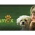 Animax investeste 15.000 euro intr-un proiect de educatie pentru copii