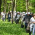 Inca 9.000 de Mega Copaci plantati de Enel si MaiMultVerde in Parcul Natural Comana
