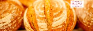 foto paine