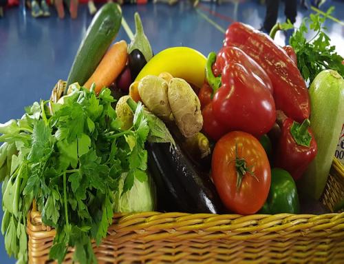 Selgros și Cash & Carry îi învață pe copii ce înseamnă alimentația sănătoasă