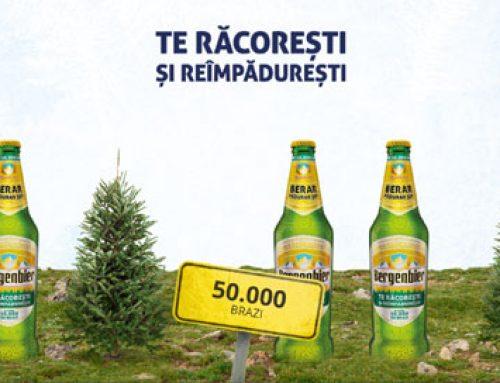Bergenbier plantează 50.000 de brazi în trei zone din Vestul României